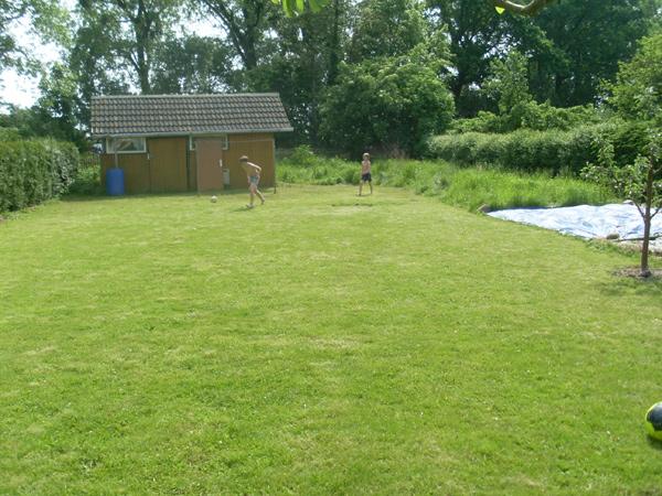 Meine Jungs auf dem frisch gemähten Rasen - ballspielend