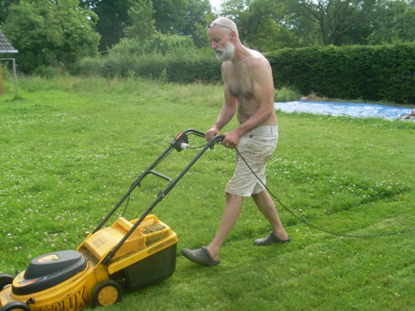 Die Rasenmäher II