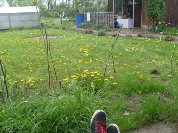 Ich sitze auf der Terrasse und träume