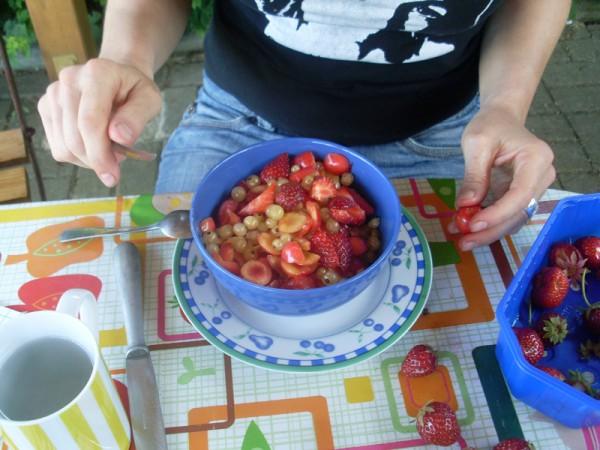 Da ist er, der paradiesische Obstsalat, mit dem ich sie in den Garten locken kann!