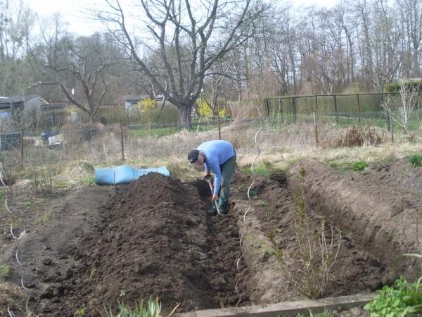 Gräben auszuheben, ist verdammt anstrengend (11. April 2015)