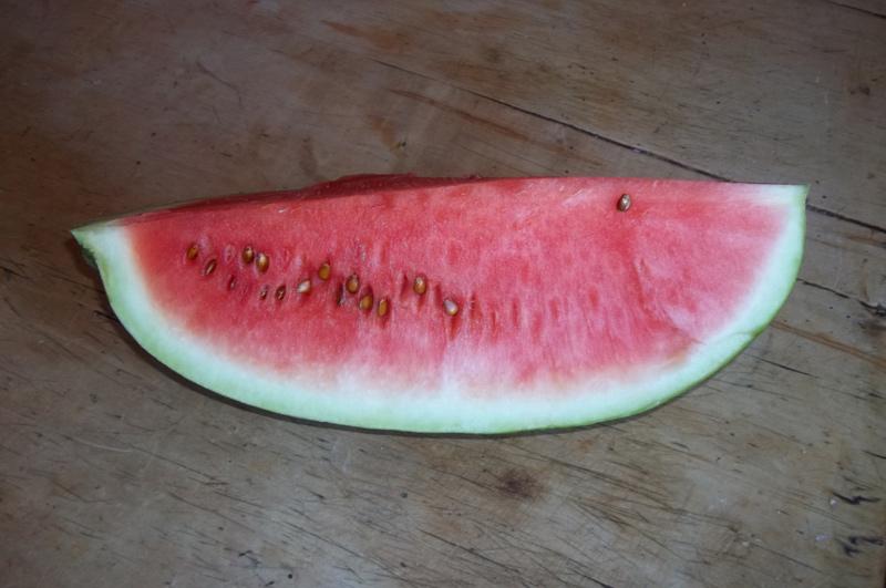 Ein Stück Wassermelone zum Schluss