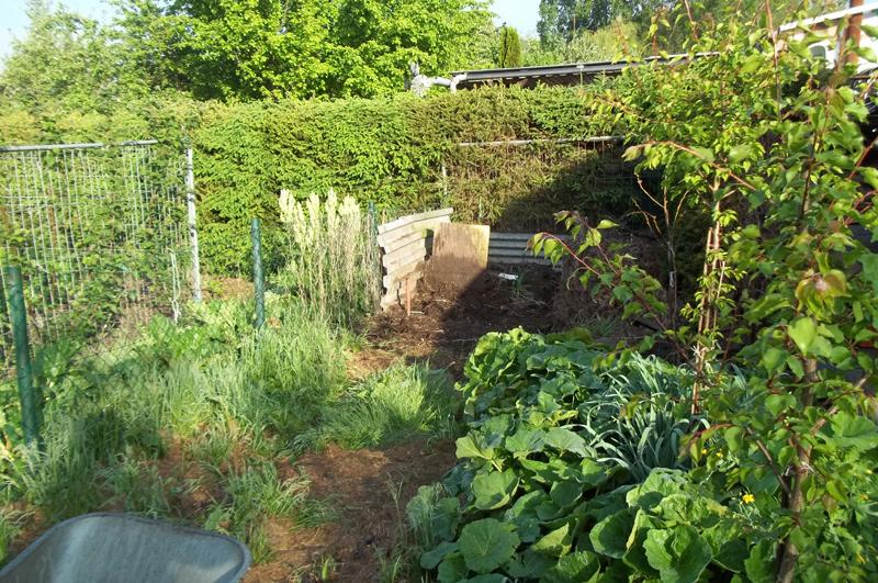 Kompostplatz am 16. Mai, kurz vor der Räumung und Bepflanzung mit Kürbisgewächsen