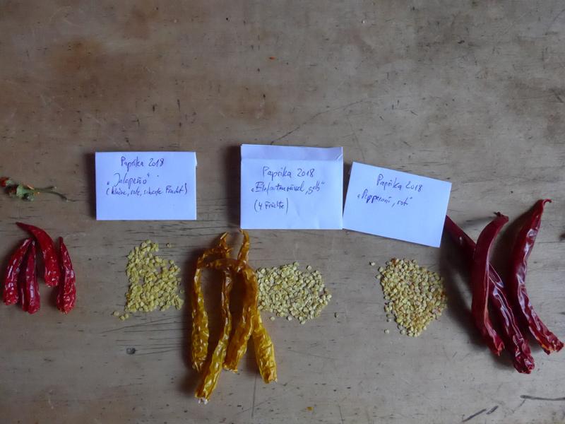 Samen aus getrockneten Früchten