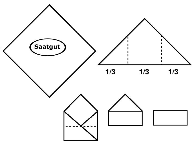 image-10225