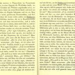Seite aus dem Dekameron von 1912