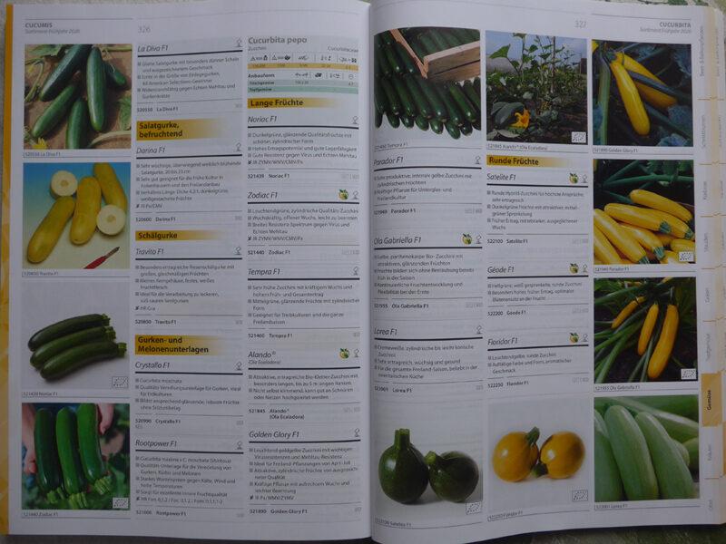 Blick in Saatgut-Katalog