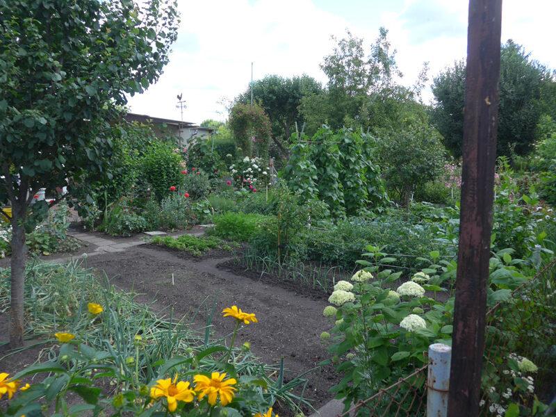Ein perfekt gepflegter Nutzgarten