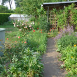 Zentralbereich des Gartens