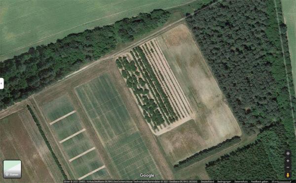 Die Aprikosenanlage aus der Luft (Satellitenaufnahme bei GOOGLE-Maps)