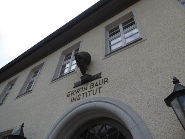 Der Kopf der Athene über dem Haupteingang des Erwin-Baur-Instituts