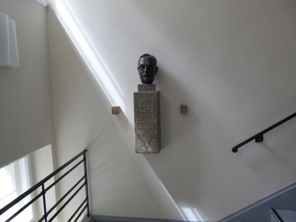 Büste von Erwin Baur im Treppenhaus des Institutsgebäudes