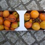 Pappkistchen mit Aprikosen