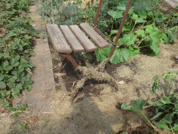 Stuhl mit anhängendem Schwemmgut