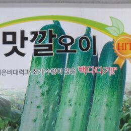 Teil einer koreanischen Gurkensamenpackung